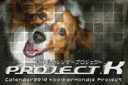 Project_k_3